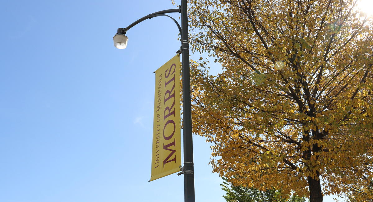 "A gold light pole banner reading ""University of Minnesota MORRIS"" in the foreground, a tree with orange fall foliage in the background"