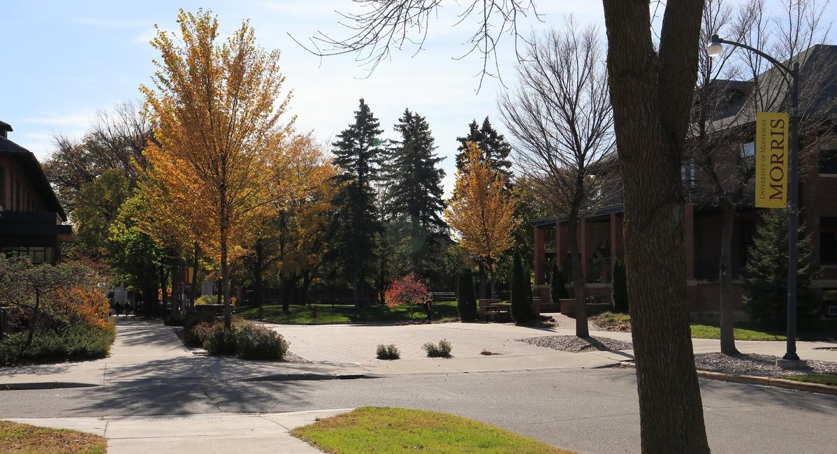 The Morris campus on a sunny day