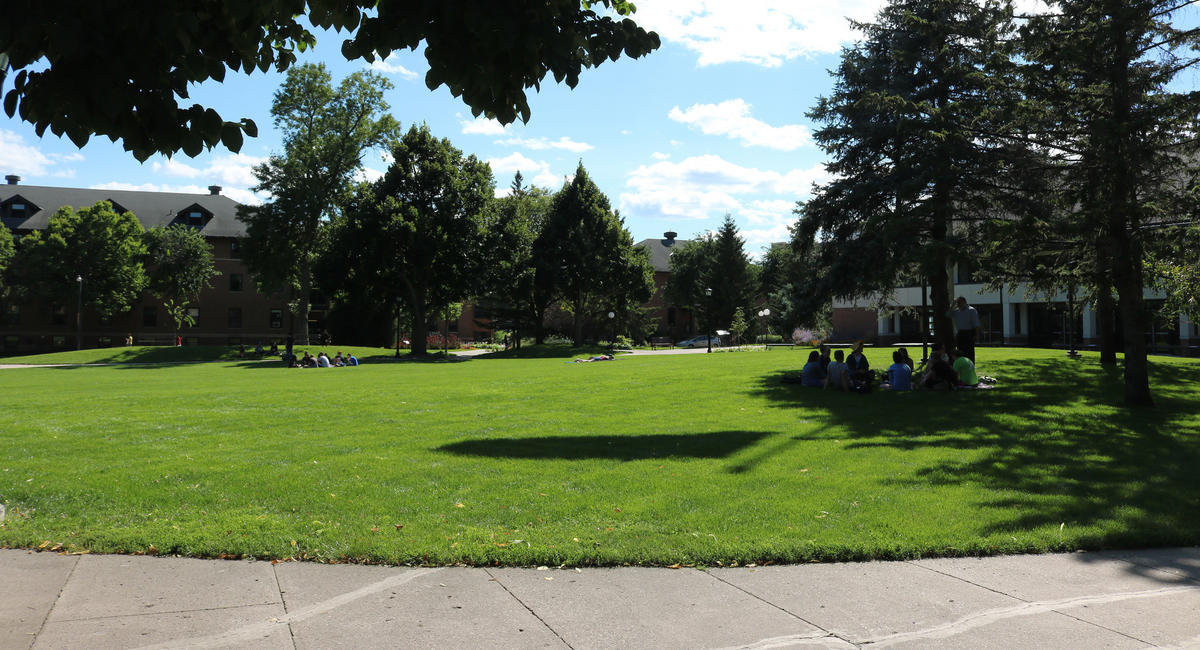 Students studying on the campus mall
