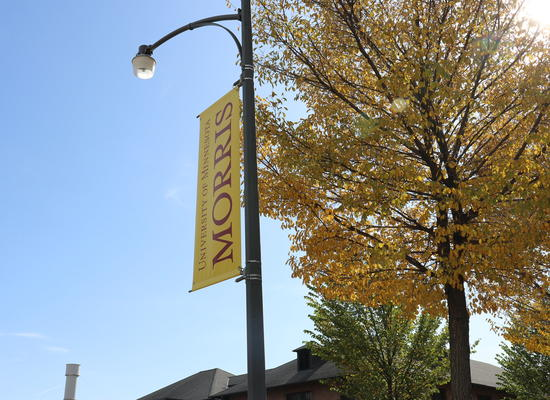 """A gold light pole banner reading """"University of Minnesota MORRIS"""" in the foreground, a tree with orange fall foliage in the background"""